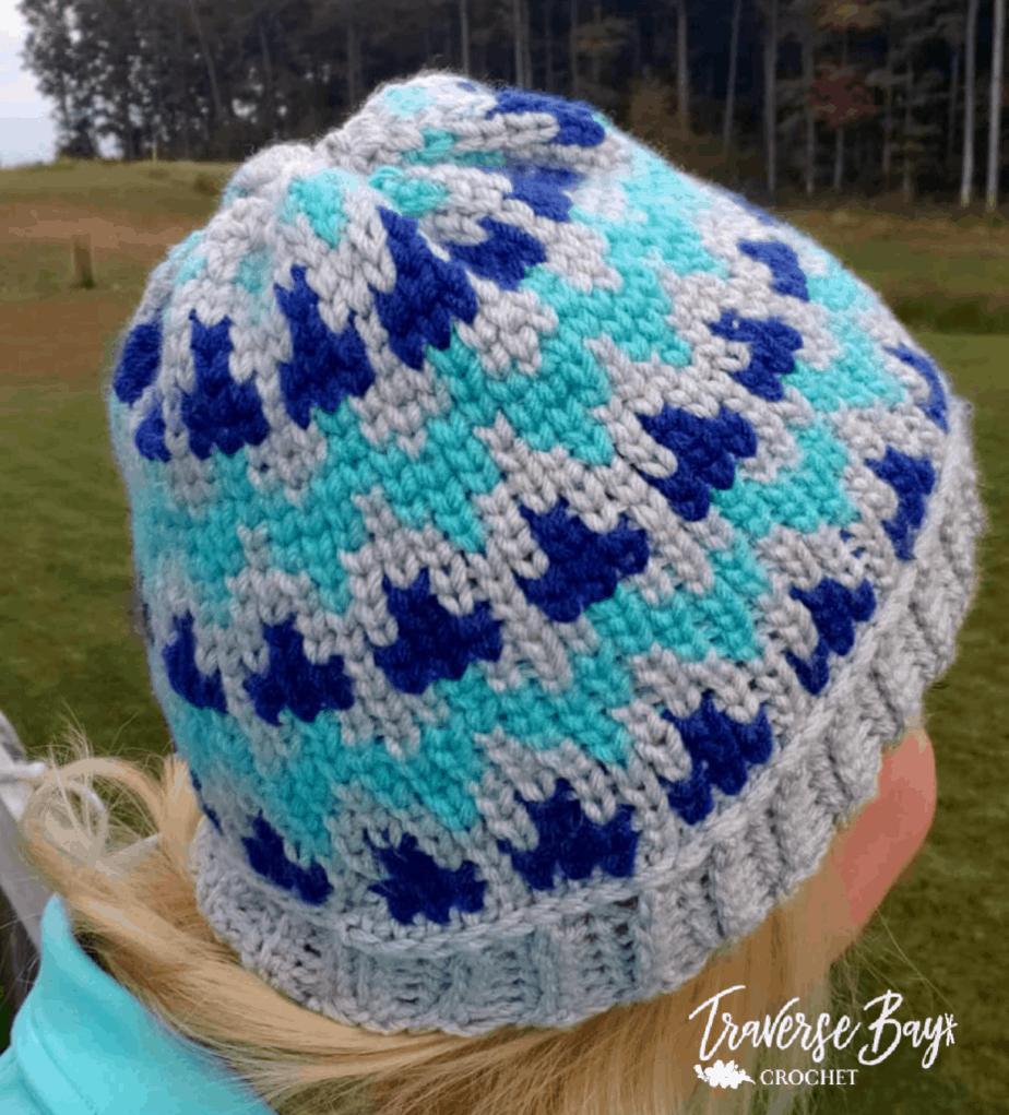 TC Waves Crochet Beanie
